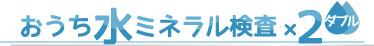 おうち水ミネラル検査×2ダブル
