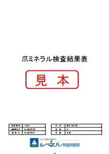 爪ミネラル検査結果表