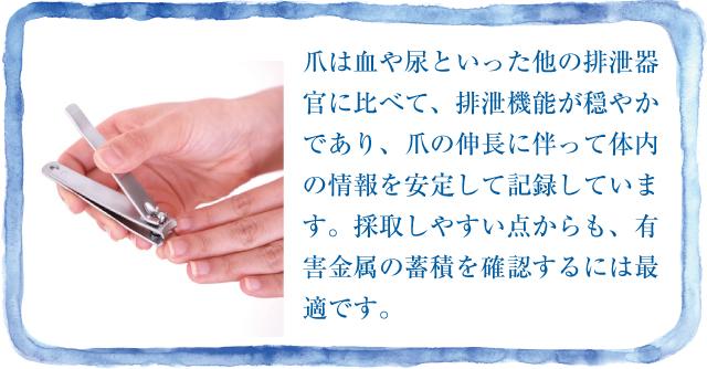爪から有害金属の蓄積を知る