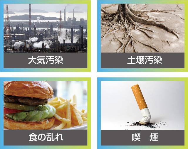 大気汚染・土壌汚染・食の乱れ・喫煙